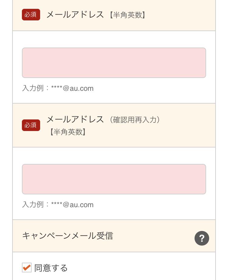 19.個人情報入力_スマートローン(2)