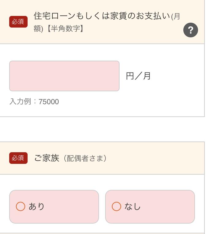 24.個人情報入力_スマートローン(8)