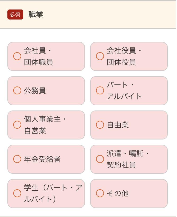 27.勤め先情報_au スマートローン(2)
