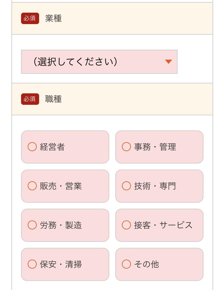 28.勤め先情報_au スマートローン(3)